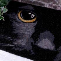 Black Cat lábtörlő