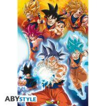 Dragon Ball - Goku formái poszter
