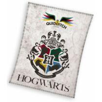 Harry Potter - Quidditch polár takaró