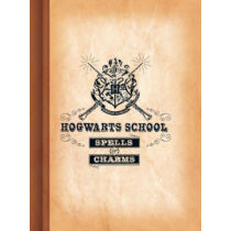 Harry Potter - Hogwarts School vonalas A4 füzet
