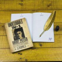 Harry Potter 3D hatású, hologramos jegyzetfüzet