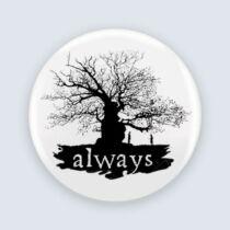Harry Potter - Always kitűző