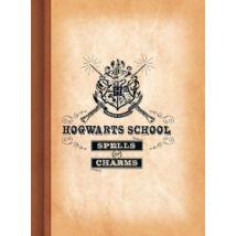 Harry Potter - Hogwarts School vonalas A4 füzet