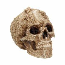 Sárkány mintával faragott koponya