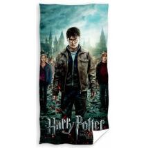 Harry Potter fürdőlepedő