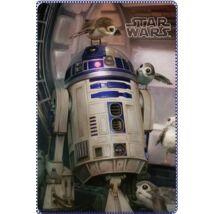 Star Wars R2D2 polár takaró