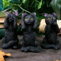 Három bölcs macska