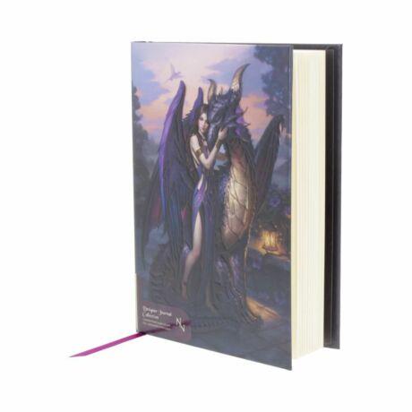 Dombornyomott Dragon Sanctuary napló